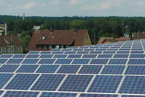 Reinigung aufgeständerte Photovoltaikanlage